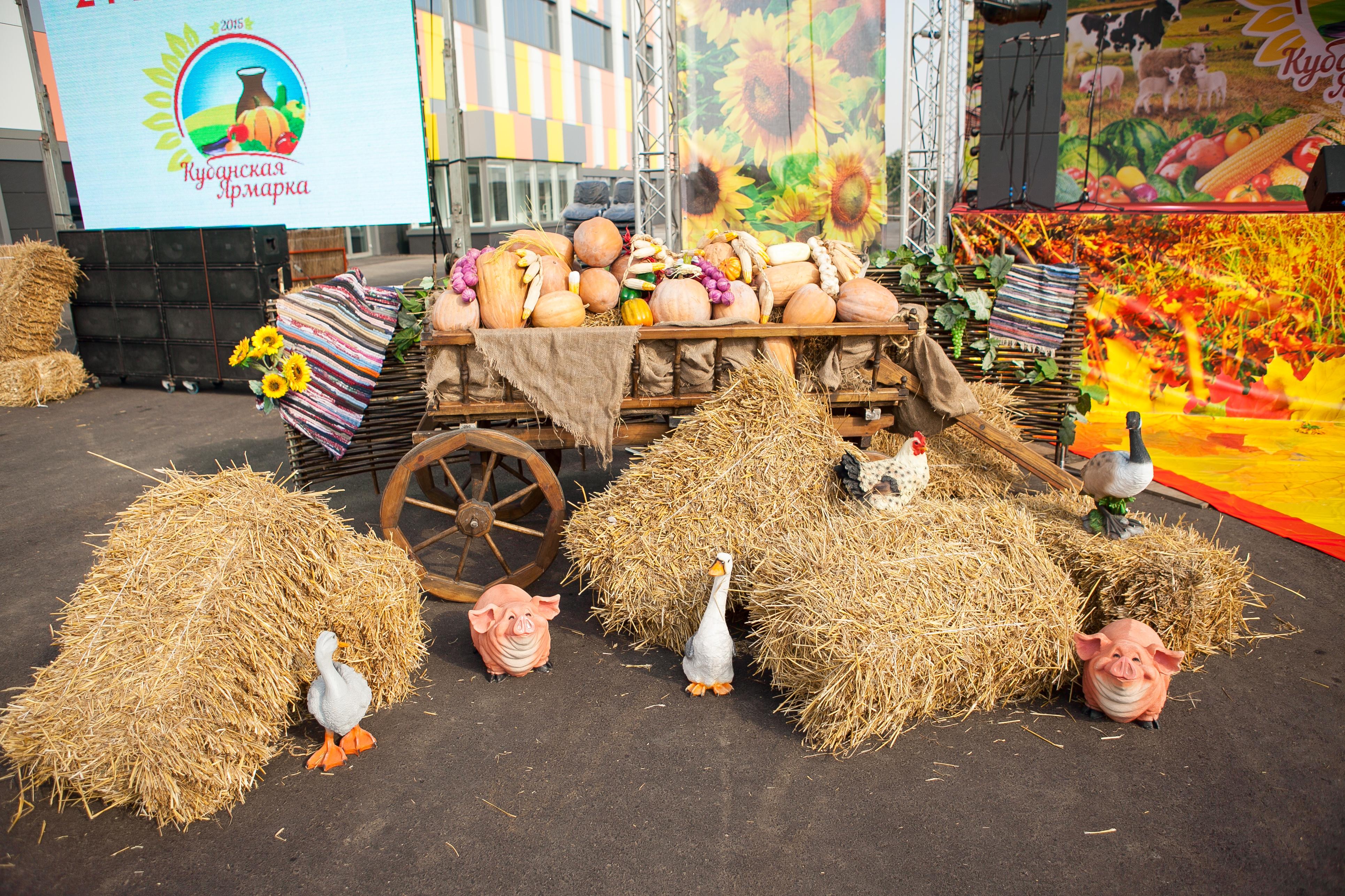 картинка к сельхоз ярмарке впечатление юного кубрика